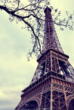 Tour Eiffel - Paris Royalty Free Stock Photography