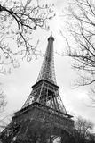 Eiffel Tower between trees, Paris Stock Photography