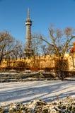 Tour et parc de Petrin dans la neige photo stock