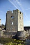 Tour grande de château de Raglan Images stock