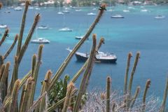 Tour of the Grenadines. Beautiful view of the Grenadines, through cactus, blue sky and waters Royalty Free Stock Photos