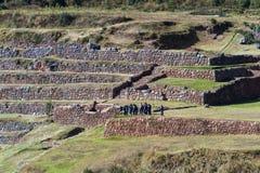 Tour group exploring Inca Terraces Royalty Free Stock Image