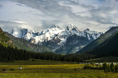 The Tour - Hatha wood Zi peaks over the Tianshan Royalty Free Stock Image