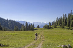 Tour on the Krottenkopf. In the combined mountain and bike tour our way leads across this idyllic pastureland Stock Images
