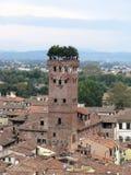 Tour Lucca de Guinigi Images stock