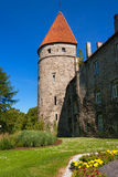 Tour médiévale. Tallinn, Estonie Photographie stock