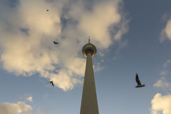 Tour ou Fernsehturm de TV avec des oiseaux au coucher du soleil, Berlin, Allemagne Photographie stock