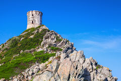 Tour Parata. Ancient Genoese tower in Ajaccio. Tour Parata. Ancient Genoese tower on the top of Sanguinaires peninsula near Ajaccio, Corsica island, France royalty free stock image