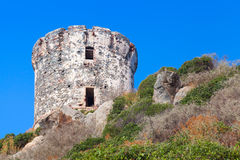 Tour Parata. Ancient Genoese tower, Corsica. Tour Parata. Ancient Genoese tower on Sanguinaires peninsula near Ajaccio, Corsica, France royalty free stock photography