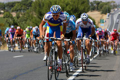 Tour Peleton. Peleton attacking a hill in Stage 5 Snappy Point to Willunga of 2009 Tour Down Under, Adelaide, Australia in horizontal format Royalty Free Stock Photography