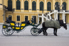 Tour of Vienna Royalty Free Stock Image