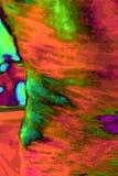 Tourbillon de couleur et de lumière image stock