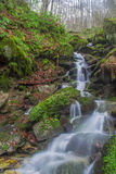 Tourbillons de cascade Images stock
