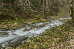 Tourbillons de cascade Image libre de droits