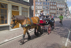 Tourism in Amsterdam Royalty Free Stock Photography