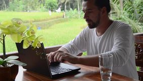 Tourism blogger posting travel tips, typing on laptop stock video