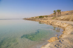 Tourism at the Dead Sea Royalty Free Stock Images