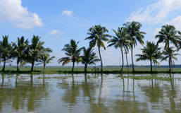 Tourism in India, the backwaters of Kerala Royalty Free Stock Images