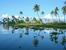 Tourism in India, lush vegetation in Kerala Royalty Free Stock Photos