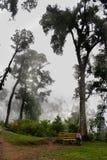 Tourisme d'Eco Photos libres de droits