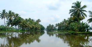 Tourisme en Inde, végétation abondante au Kerala Image stock