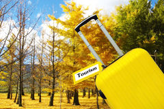 tourisme Valise avec le label en mer Image stock