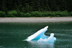 Tourismus in Alaska 3 Lizenzfreie Stockfotografie