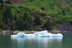 Tourismus in Alaska 2 Lizenzfreie Stockfotos