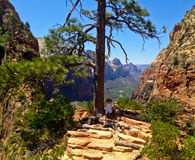Tourist  in Angels landing Stock Images