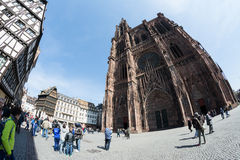Tourist around Cathedral Notre-Dame-de-Strasbourg Stock Image