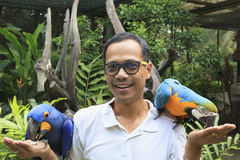 Tourist asian man and hyacinth parrot birds perching on hand Stock Photos