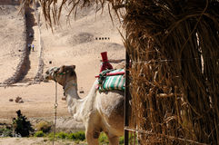A tourist attraction in Egypt Stock Images