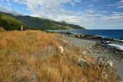 Tourist auf Küste des karibischen Meeres Lizenzfreie Stockbilder