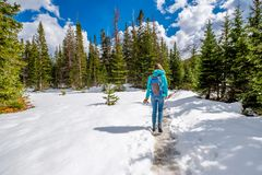Tourist with backpack hiking on snowy trail Royalty Free Stock Images