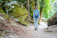 Tourist with backpack hiking on trail in Yosemite Stock Photos