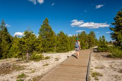 Tourist with backpack hiking in Yellowstone Royalty Free Stock Image