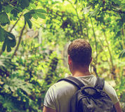 Tourist with backpack. Tourist with backpack in the jungle. Vintage effect. Space for your text Royalty Free Stock Image