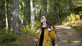 Tourist backpacks in forest. Caucasian female tourist, in yellow jacket and black sunglasses, backpacking walks through the forest, slowmotion on sunny fall day stock video