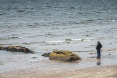 Tourist on the Ballingskelligs Bay Beach Royalty Free Stock Photo