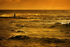 Tourist on Beach with Ocean and Golden Sunrise Sunset Light Stock Images