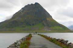 Tourist looking at sea on Lofoten royalty free stock images