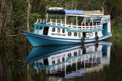 Tourist boat on the river in Borneo. Tourist boat in the forest in Borneo, Indonesia Royalty Free Stock Photography