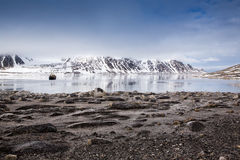 Tourist boat in Spitsbergen. A tourist boat anchored in a beautiful bay, surrounded by Spitsbergen, Svalbard stock images