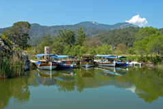 Tourist boats on Dalyan river Stock Photo