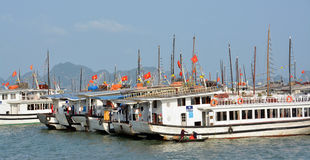 Tourist Boats Moored in Halong Bay Stock Image