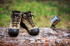 Tourist boots on wooden log in forest Stock Image