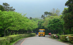 Tourist bus running along the road. In Alishan, Taiwan. This bus leaves from Sun Moon Lake heading to Alishan National Park, Taiwan royalty free stock image