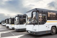 tourist buses on parking royalty free stock image