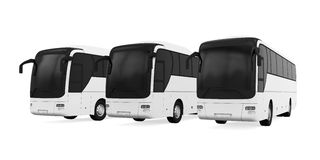 Tourist Buses  Stock Images