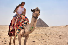 Tourist on the camel in Cairo, Egypt.  Royalty Free Stock Photos